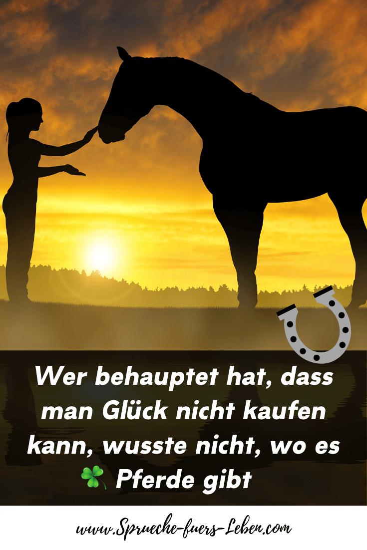 Wer behauptet hat, dass man Glück nicht kaufen kann, wusste nicht, wo es Pferde gibt
