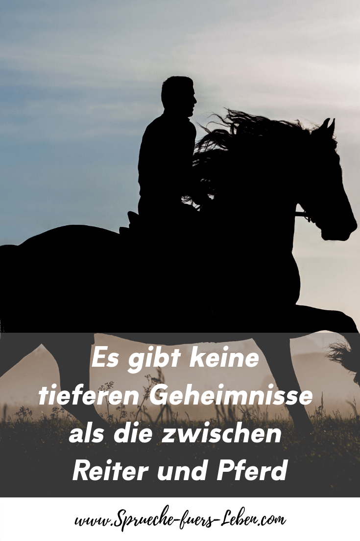 Es gibt keine tieferen Geheimnisse als die zwischen Reiter und Pferd