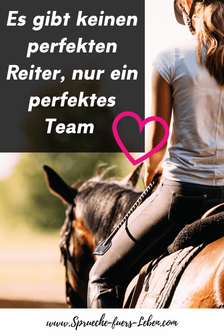 Es gibt keinen perfekten Reiter, nur ein perfektes Team