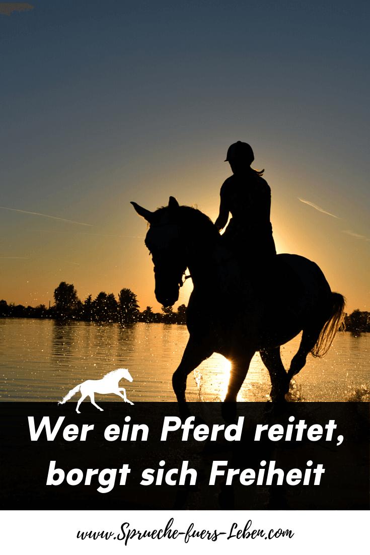 Wer ein Pferd reitet, borgt sich Freiheit