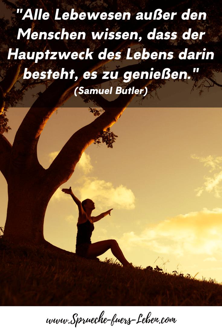 """""""Alle Lebewesen außer den Menschen wissen, dass der Hauptzweck des Lebens darin besteht, es zu genießen."""" (Samuel Butler)"""