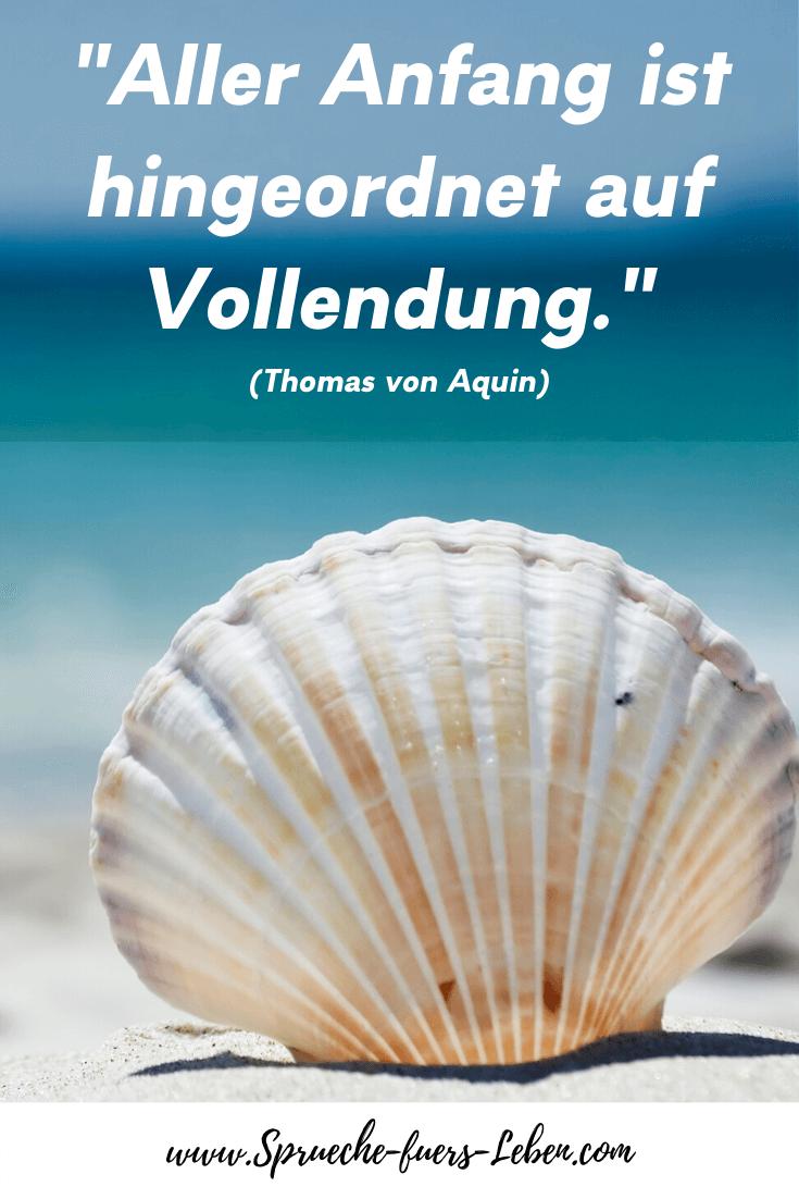 """""""Aller Anfang ist hingeordnet auf Vollendung."""" (Thomas von Aquin)"""