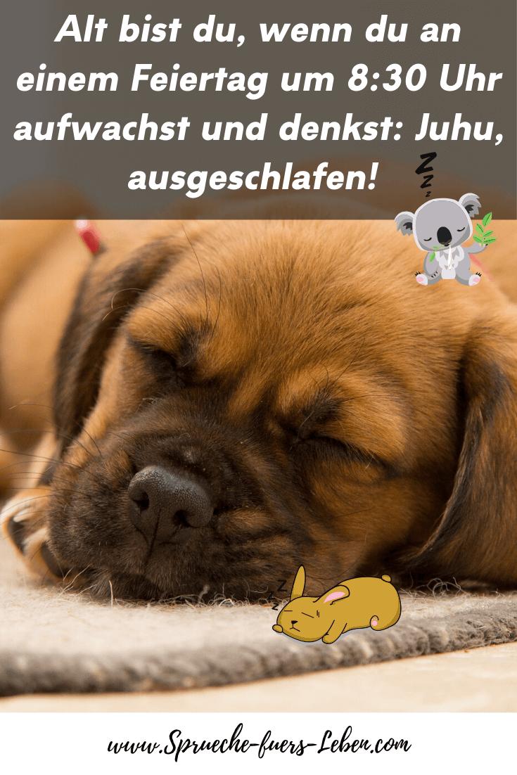 Alt bist du, wenn du an einem Feiertag um 8:30 Uhr aufwachst und denkst: Juhu, ausgeschlafen!