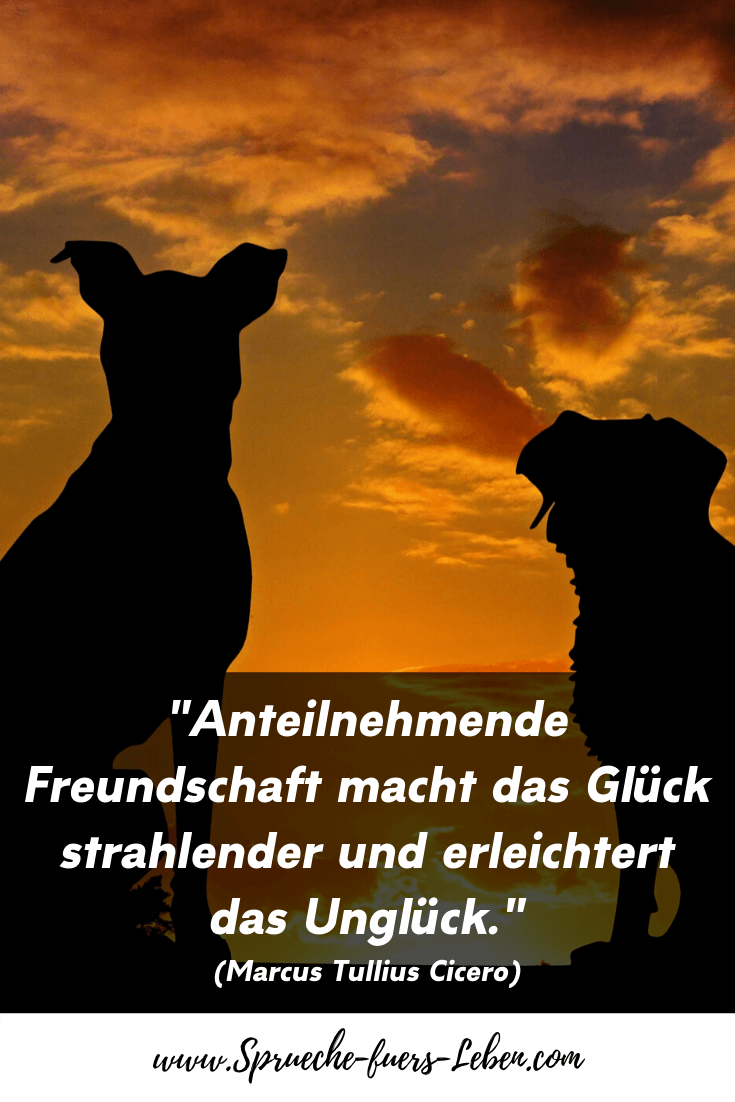 """""""Anteilnehmende Freundschaft macht das Glück strahlender und erleichtert das Unglück."""" (Marcus Tullius Cicero)"""