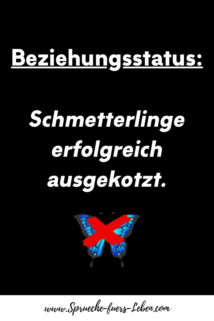 Beziehungsstatus Schmetterlinge erfolgreich ausgekotzt.