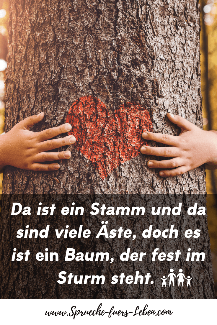 Da ist ein Stamm und da sind viele Äste, doch es ist ein Baum, der fest im Sturm steht.