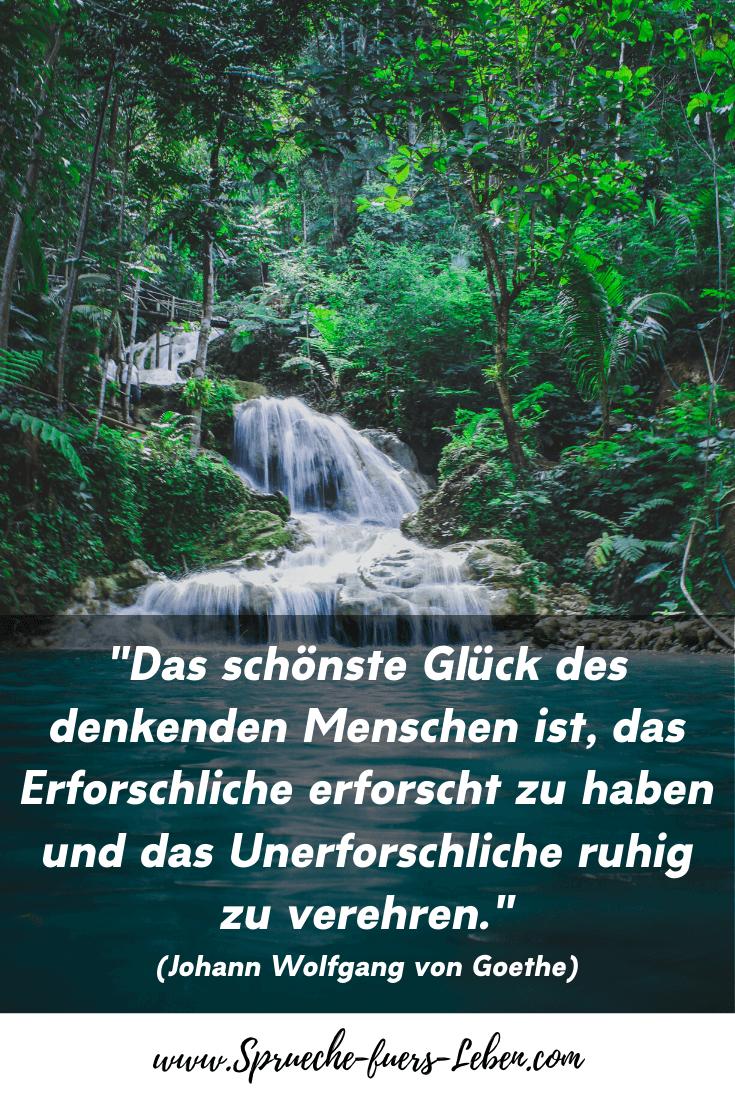 """""""Das schönste Glück des denkenden Menschen ist, das Erforschliche erforscht zu haben und das Unerforschliche ruhig zu verehren."""" (Johann Wolfgang von Goethe)"""