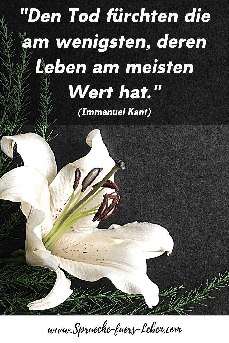 """""""Den Tod fürchten die am wenigsten, deren Leben am meisten Wert hat."""" (Immanuel Kant)"""