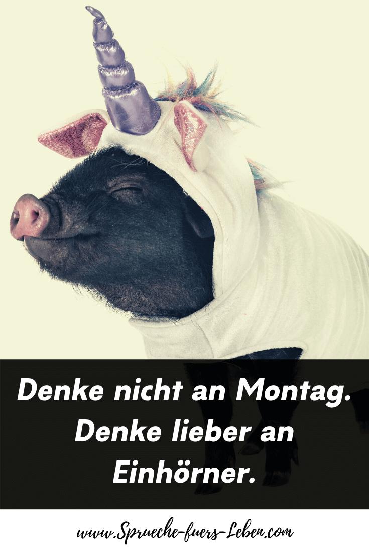 Denke nicht an Montag. Denke lieber an Einhörner.