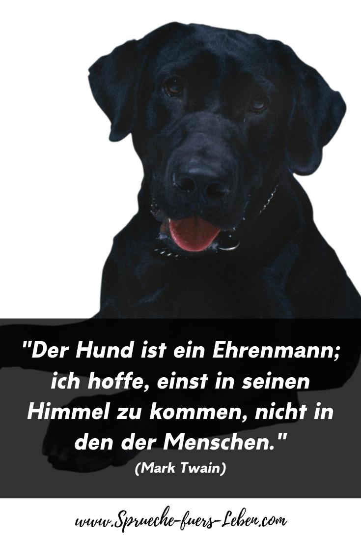 """""""Der Hund ist ein Ehrenmann; ich hoffe, einst in seinen Himmel zu kommen, nicht in den der Menschen."""" (Mark Twain)"""