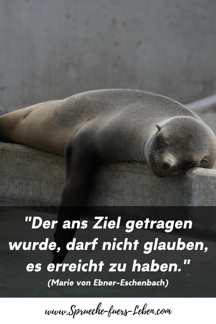 """""""Der ans Ziel getragen wurde, darf nicht glauben, es erreicht zu haben."""" (Marie von Ebner-Eschenbach)"""