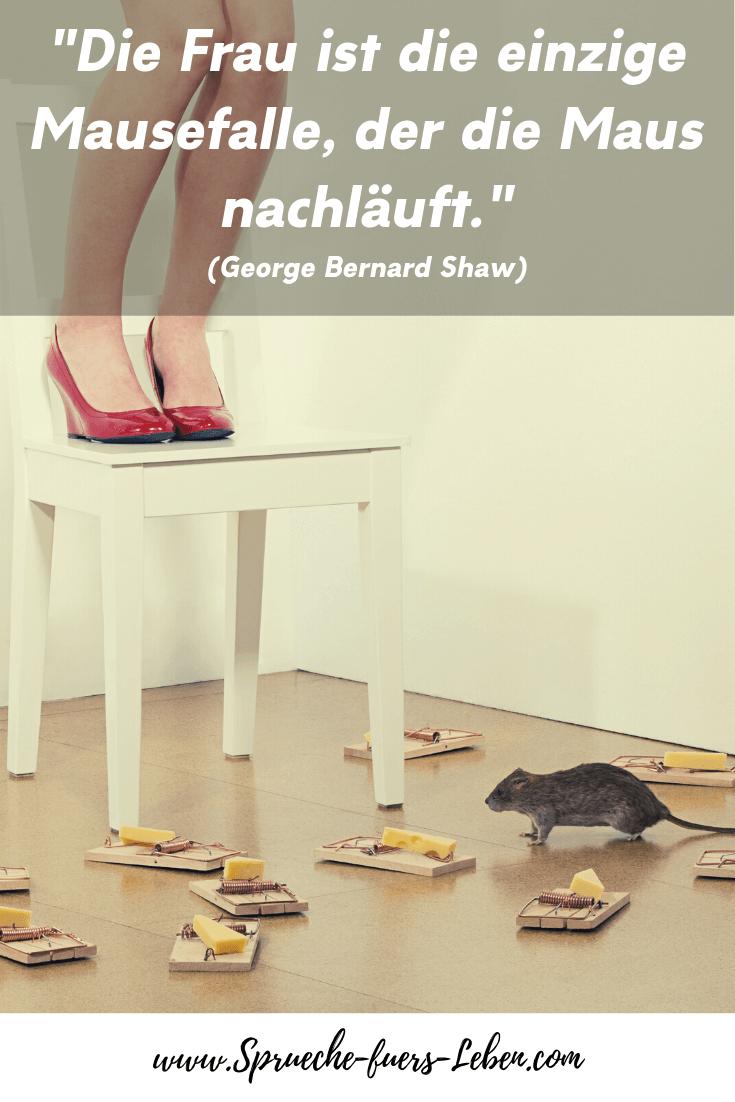 """""""Die Frau ist die einzige Mausefalle, der die Maus nachläuft."""" (George Bernard Shaw)"""