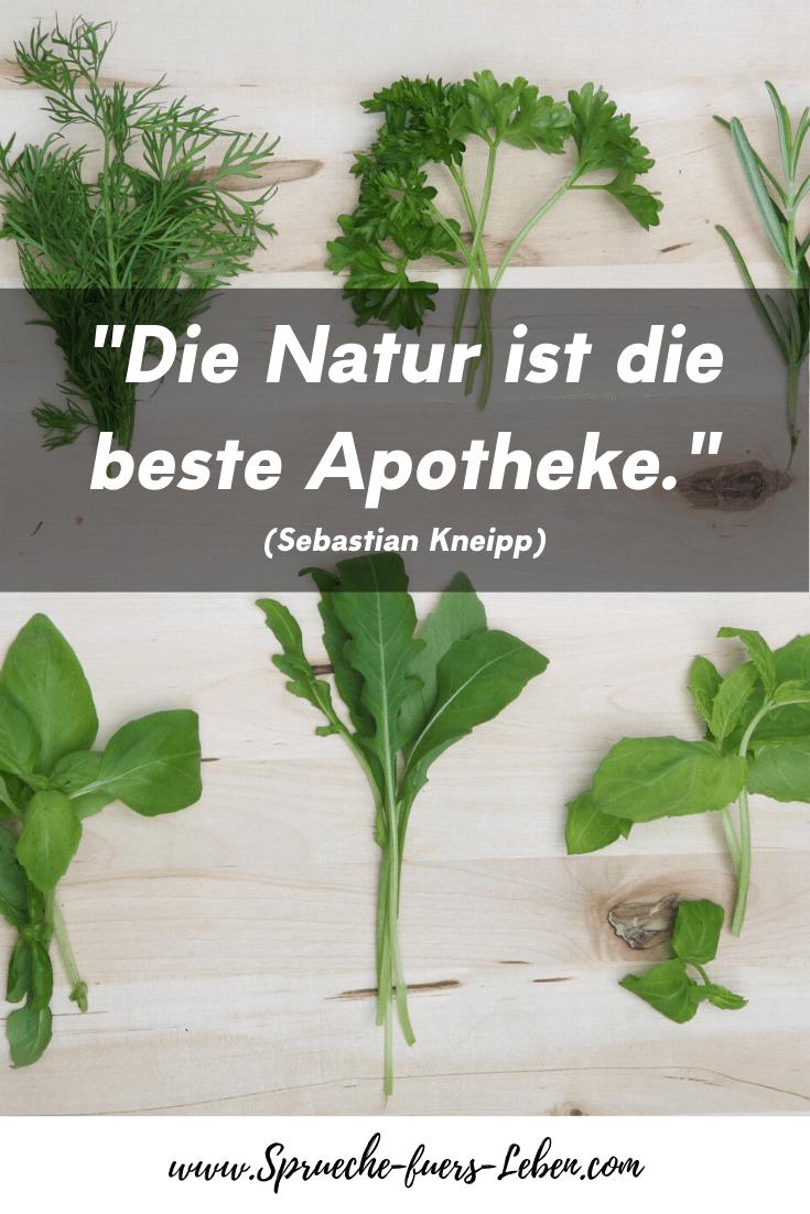 """""""Die Natur ist die beste Apotheke."""" (Sebastian Kneipp)"""