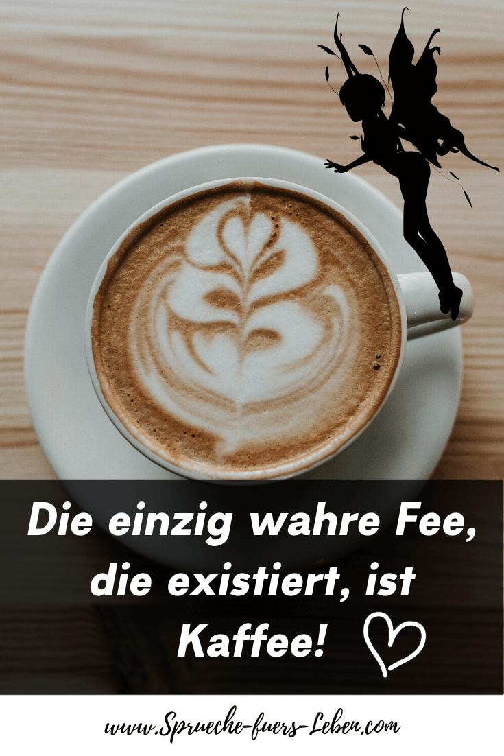 Die einzig wahre Fee, die existiert, ist Kaffee!