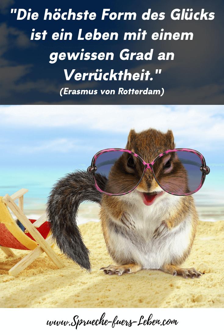 """""""Die höchste Form des Glücks ist ein Leben mit einem gewissen Grad an Verrücktheit."""" (Erasmus von Rotterdam)"""