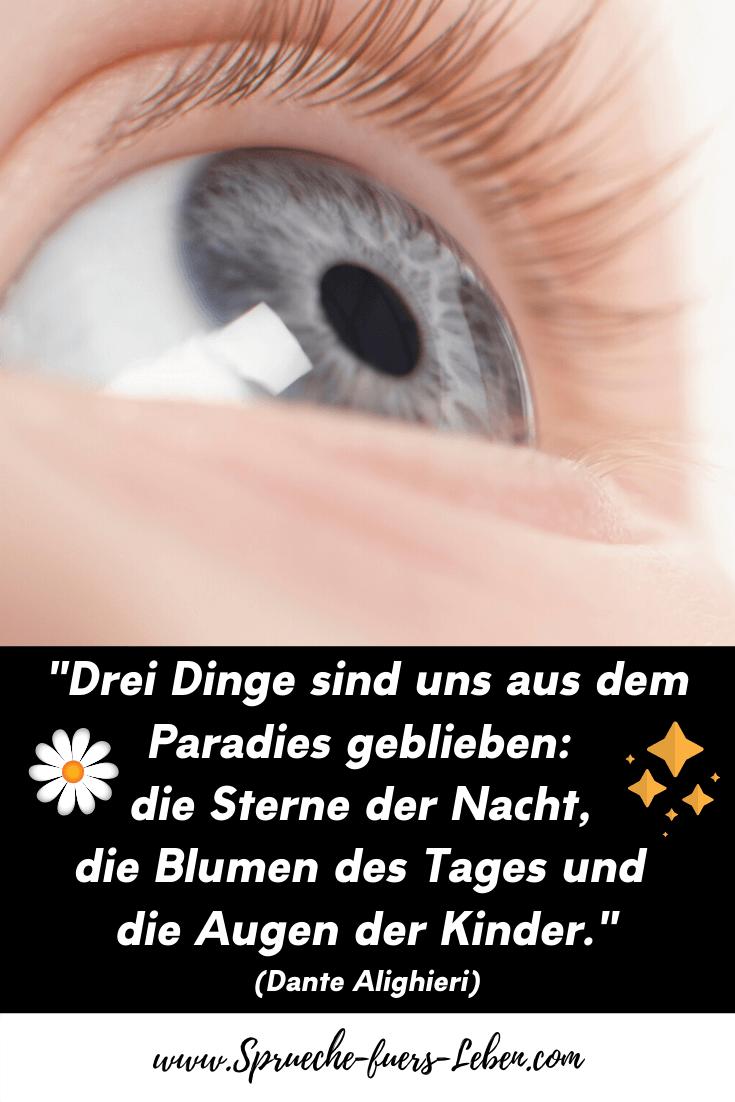 """""""Drei Dinge sind uns aus dem Paradies geblieben: die Sterne der Nacht, die Blumen des Tages und die Augen der Kinder."""" (Dante Alighieri)"""
