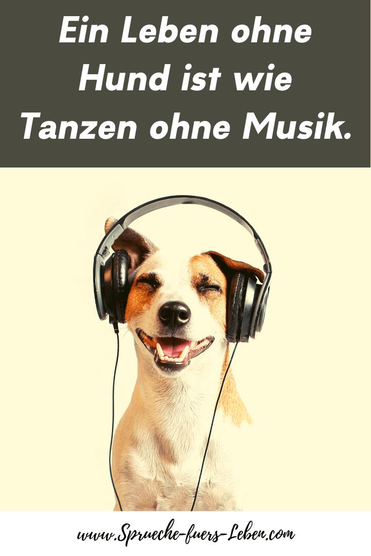 Ein Leben ohne Hund ist wie Tanzen ohne Musik.