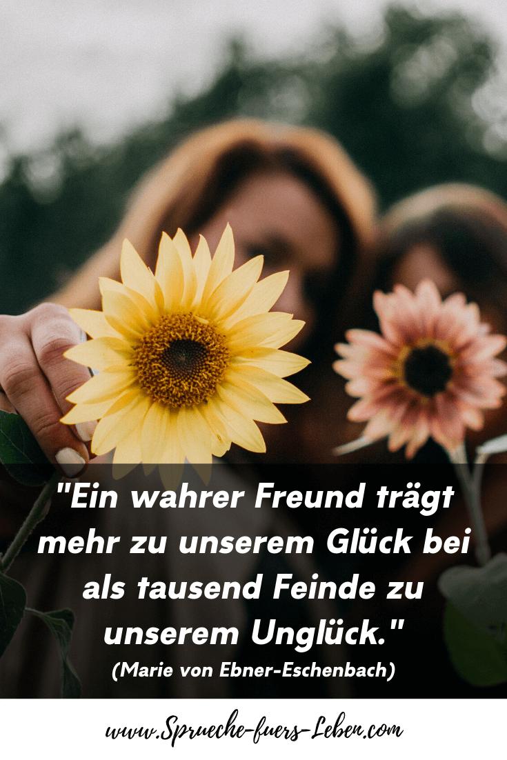 """""""Ein wahrer Freund trägt mehr zu unserem Glück bei als tausend Feinde zu unserem Unglück."""" (Marie von Ebner-Eschenbach)"""