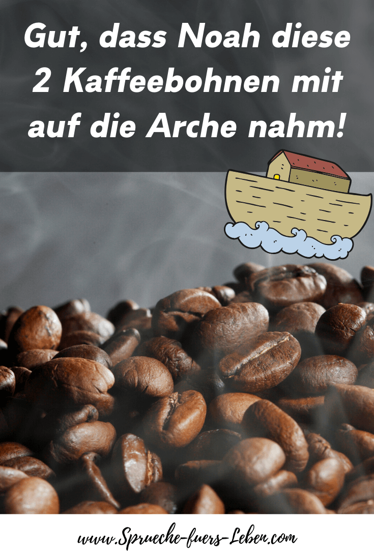 Gut, dass Noah diese 2 Kaffeebohnen mit auf die Arche nahm!