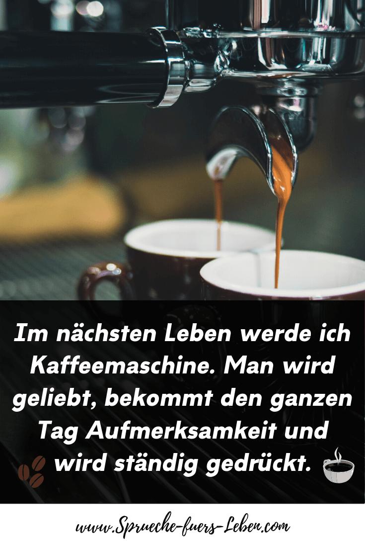Im nächsten Leben werde ich Kaffeemaschine. Man wird geliebt, bekommt den ganzen Tag Aufmerksamkeit und wird ständig gedrückt.