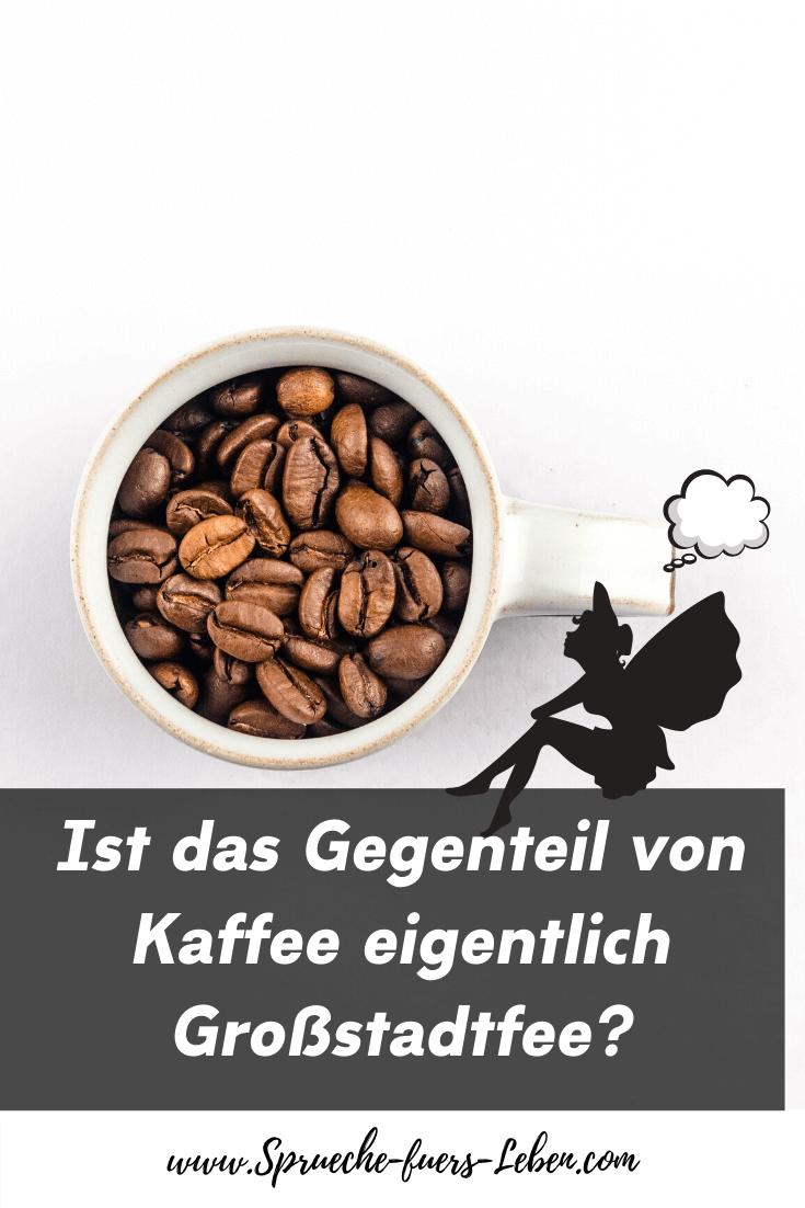 Ist das Gegenteil von Kaffee eigentlich Großstadtfee?