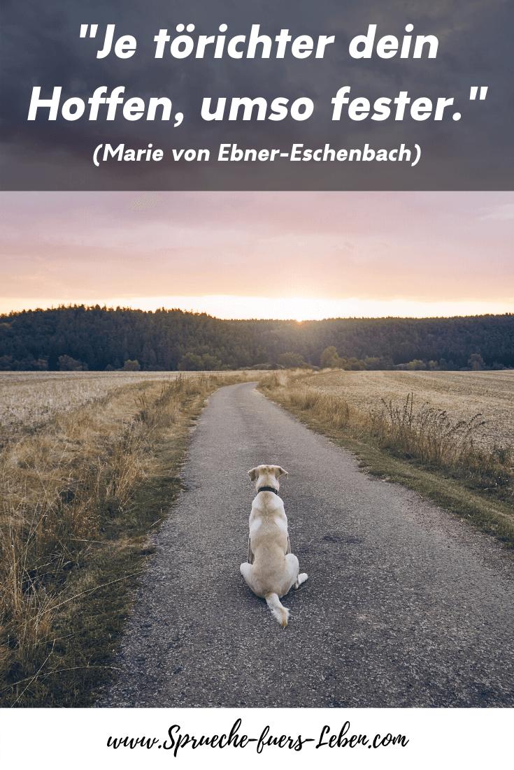 """""""Je törichter dein Hoffen, umso fester."""" (Marie von Ebner-Eschenbach)"""