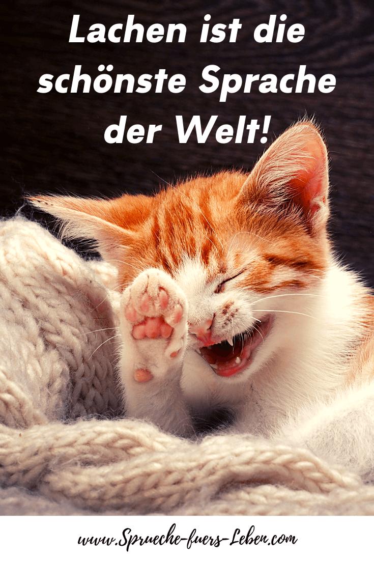 Lachen ist die schönste Sprache der Welt!