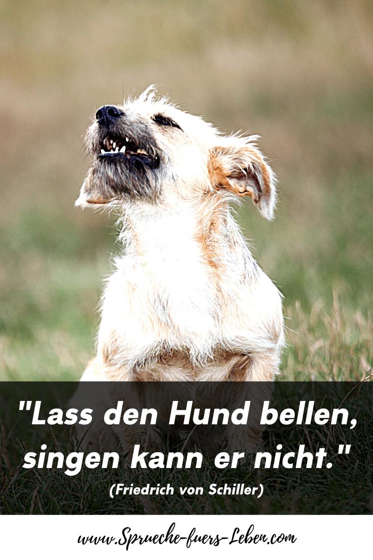 """""""Lass den Hund bellen, singen kann er nicht."""" (Friedrich von Schiller)"""