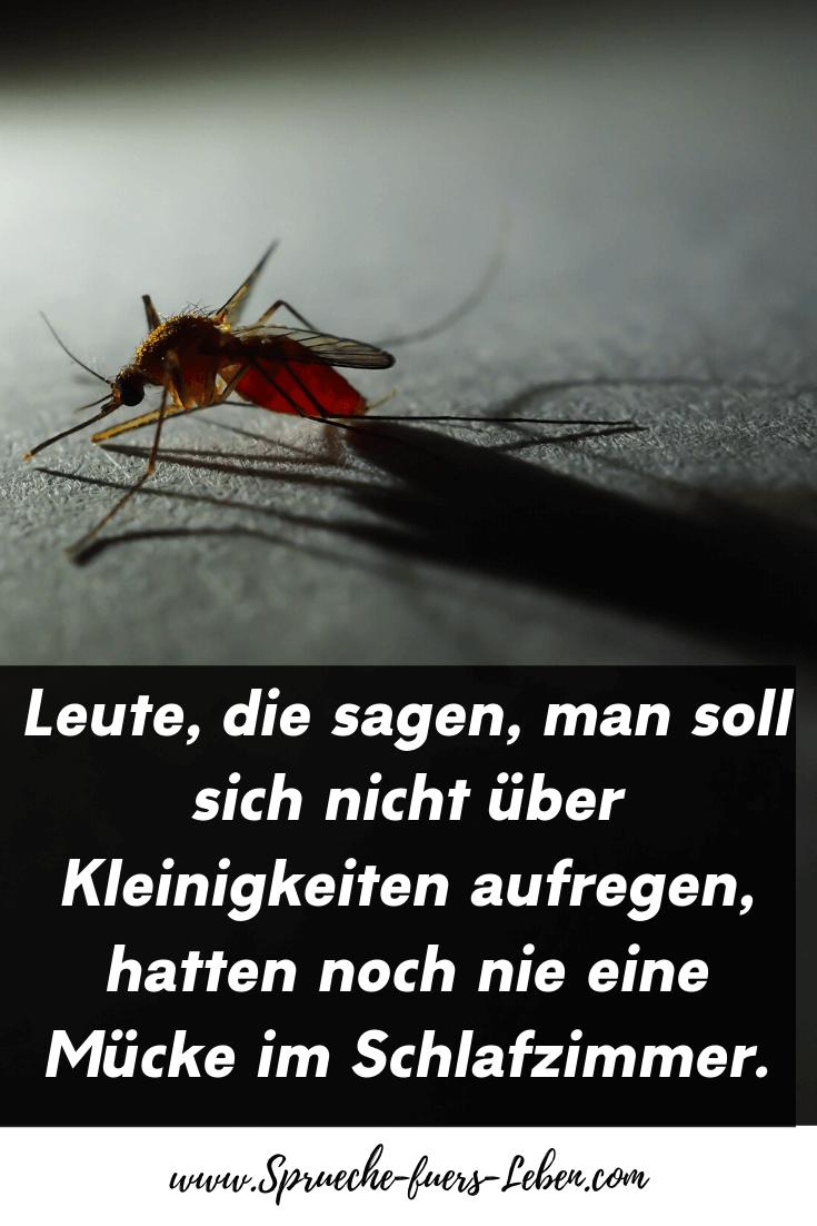 Leute, die sagen, man soll sich nicht über Kleinigkeiten aufregen, hatten noch nie eine Mücke im Schlafzimmer.