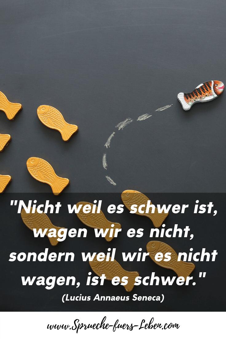 """""""Nicht weil es schwer ist, wagen wir es nicht, sondern weil wir es nicht wagen, ist es schwer."""" (Lucius Annaeus Seneca)"""