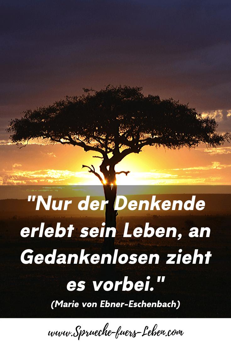 """""""Nur der Denkende erlebt sein Leben, an Gedankenlosen zieht es vorbei."""" (Marie von Ebner-Eschenbach)"""