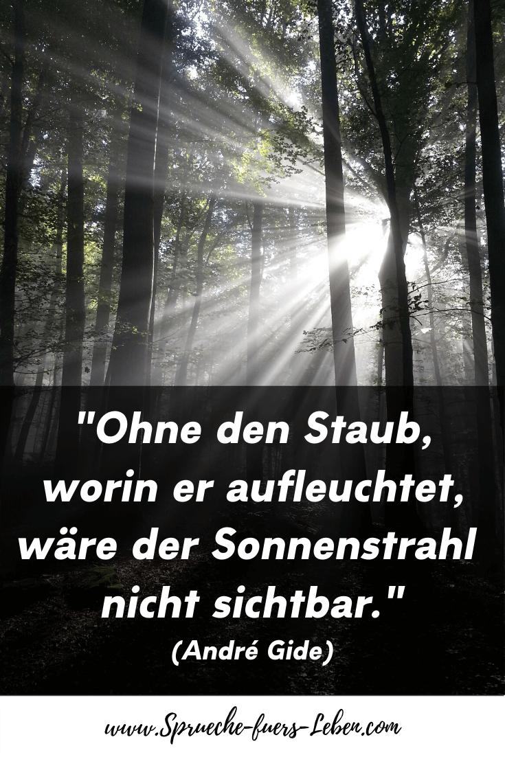 """""""Ohne den Staub, worin er aufleuchtet, wäre der Sonnenstrahl nicht sichtbar."""" (André Gide)"""