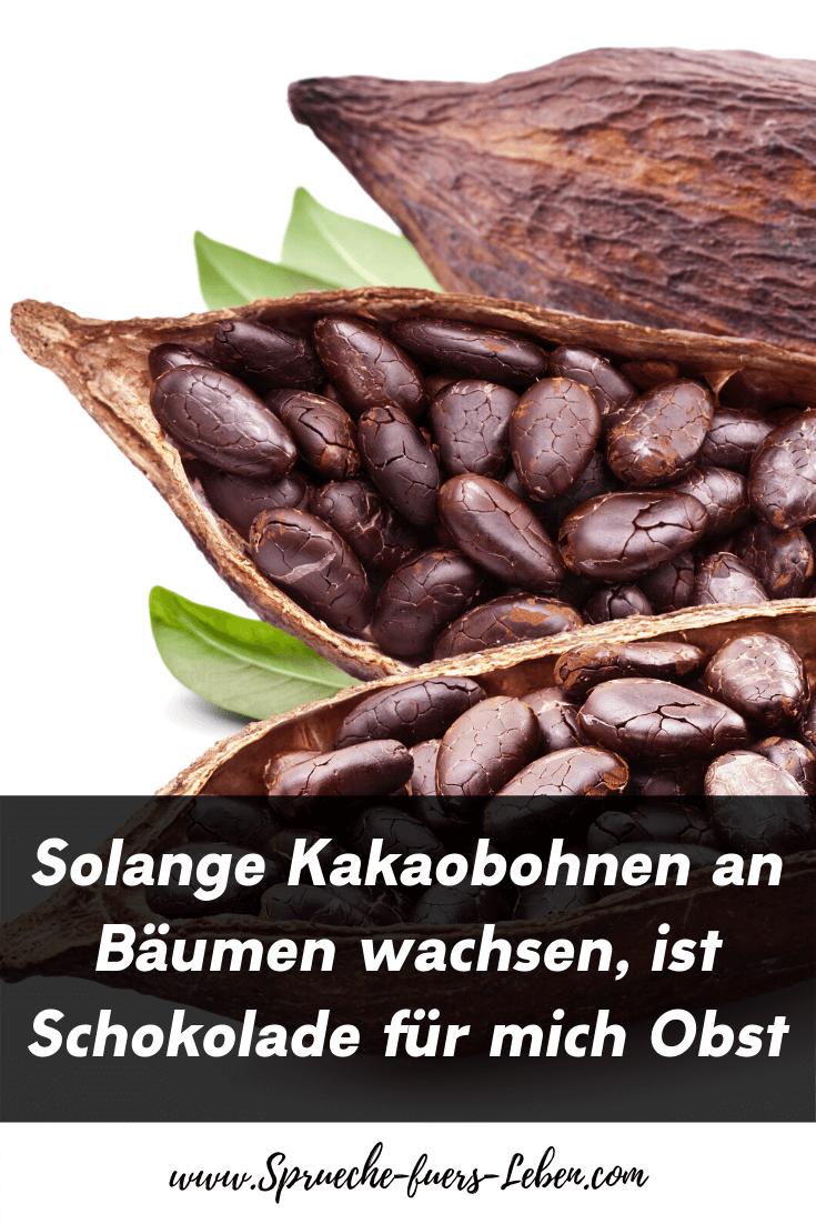 Solange Kakaobohnen an Bäumen wachsen, ist Schokolade für mich Obst