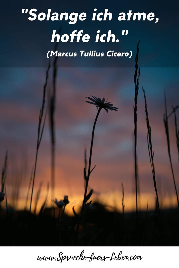 """""""Solange ich atme, hoffe ich."""" (Marcus Tullius Cicero)"""
