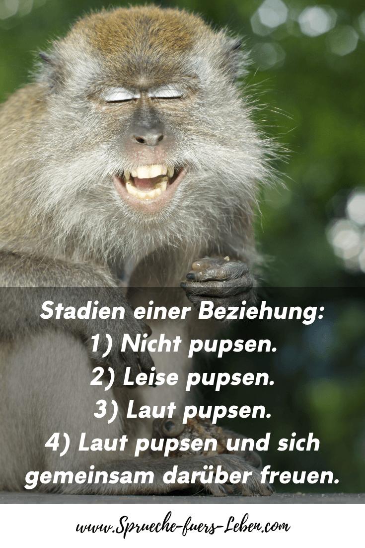 Stadien einer Beziehung: 1) Nicht pupsen. 2) Leise pupsen. 3) Laut pupsen. 4) Laut pupsen und sich gemeinsam darüber freuen.