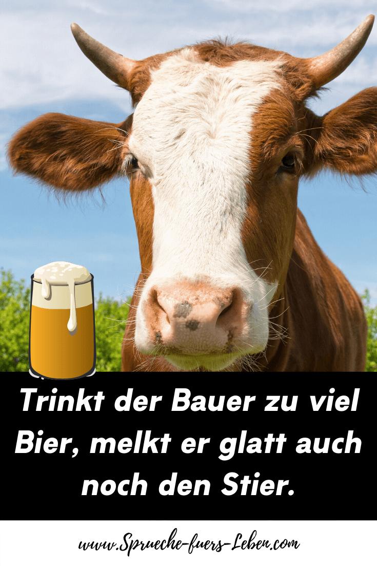 Trinkt der Bauer zu viel Bier, melkt er glatt auch noch den Stier.