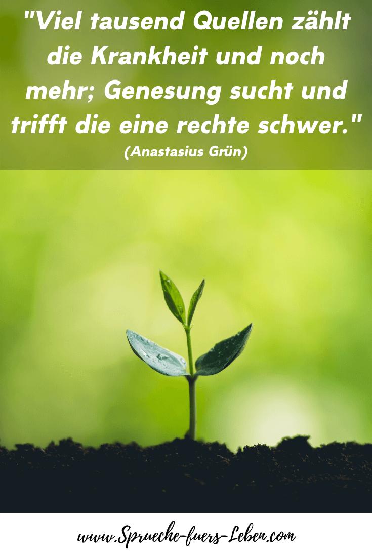 """""""Viel tausend Quellen zählt die Krankheit und noch mehr; Genesung sucht und trifft die eine rechte schwer."""" (Anastasius Grün)"""