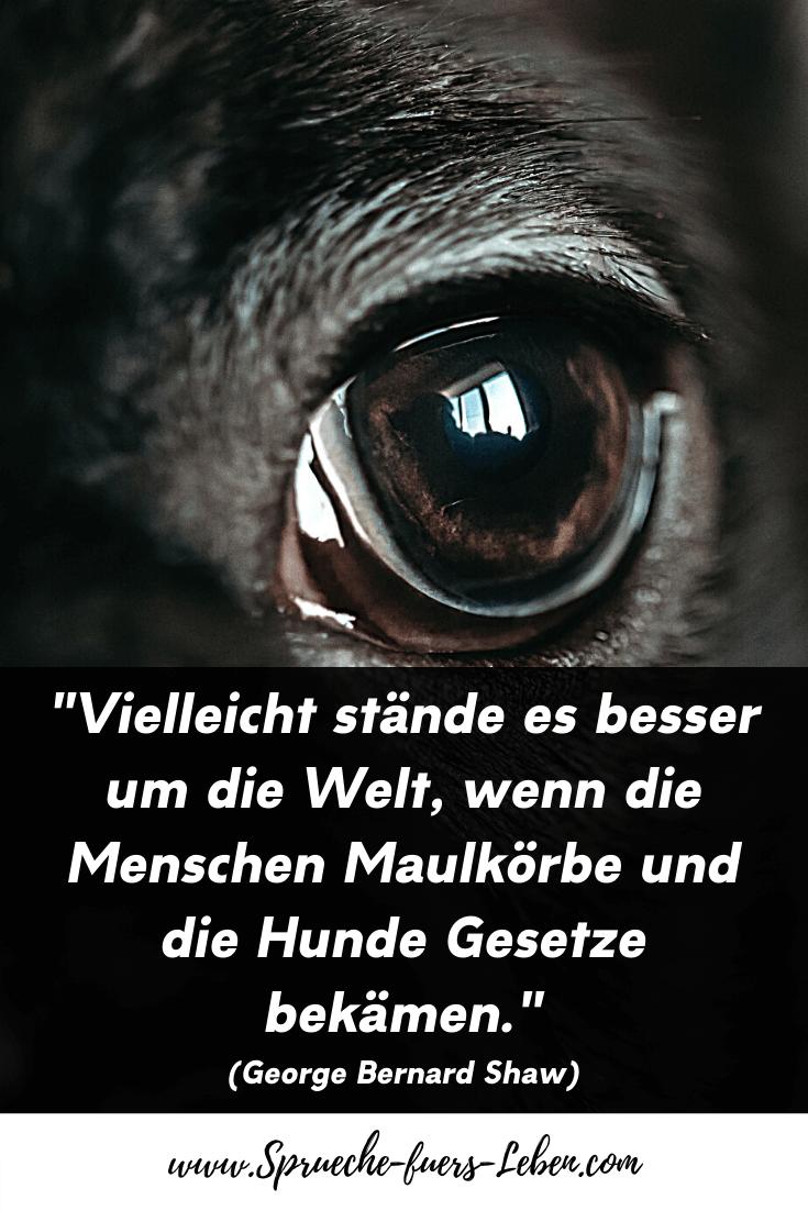 """""""Vielleicht stände es besser um die Welt, wenn die Menschen Maulkörbe und die Hunde Gesetze bekämen."""" (George Bernard Shaw)"""