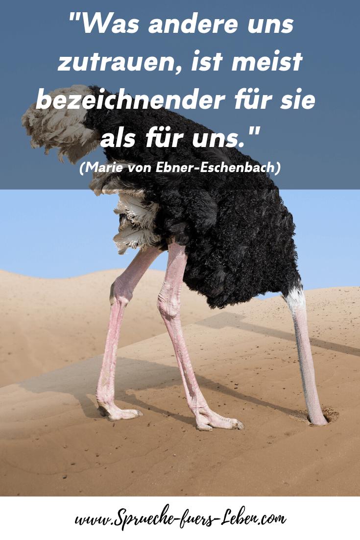 """""""Was andere uns zutrauen, ist meist bezeichnender für sie als für uns."""" (Marie von Ebner-Eschenbach)"""