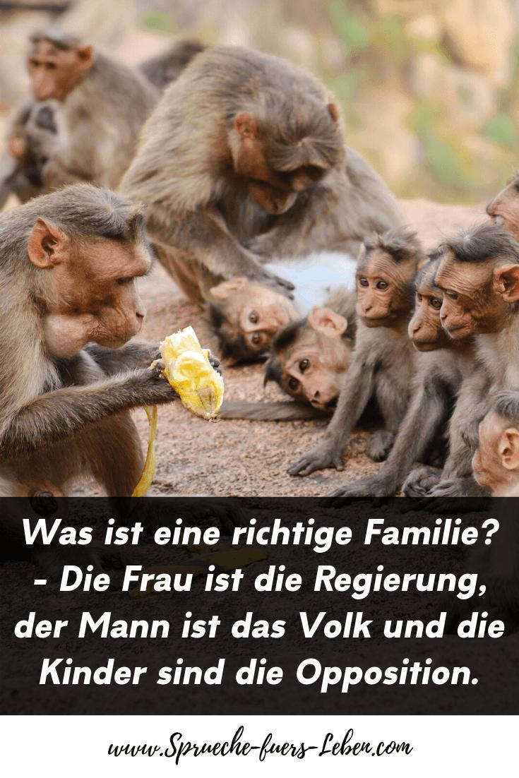 Was ist eine richtige Familie? - Die Frau ist die Regierung, der Mann ist das Volk und die Kinder sind die Opposition.