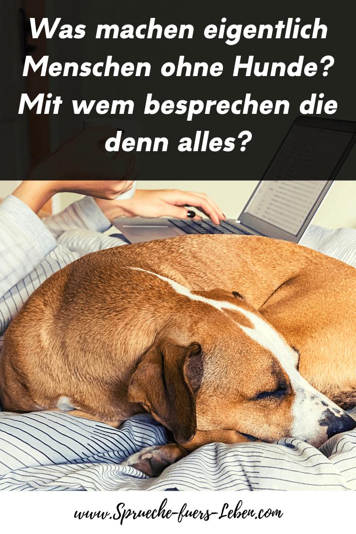 Was machen eigentlich Menschen ohne Hunde? Mit wem besprechen die denn alles?