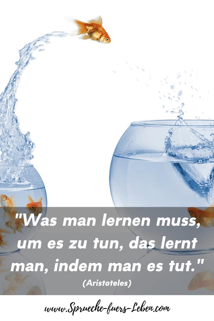 """""""Was man lernen muss, um es zu tun, das lernt man, indem man es tut."""" (Aristoteles)"""