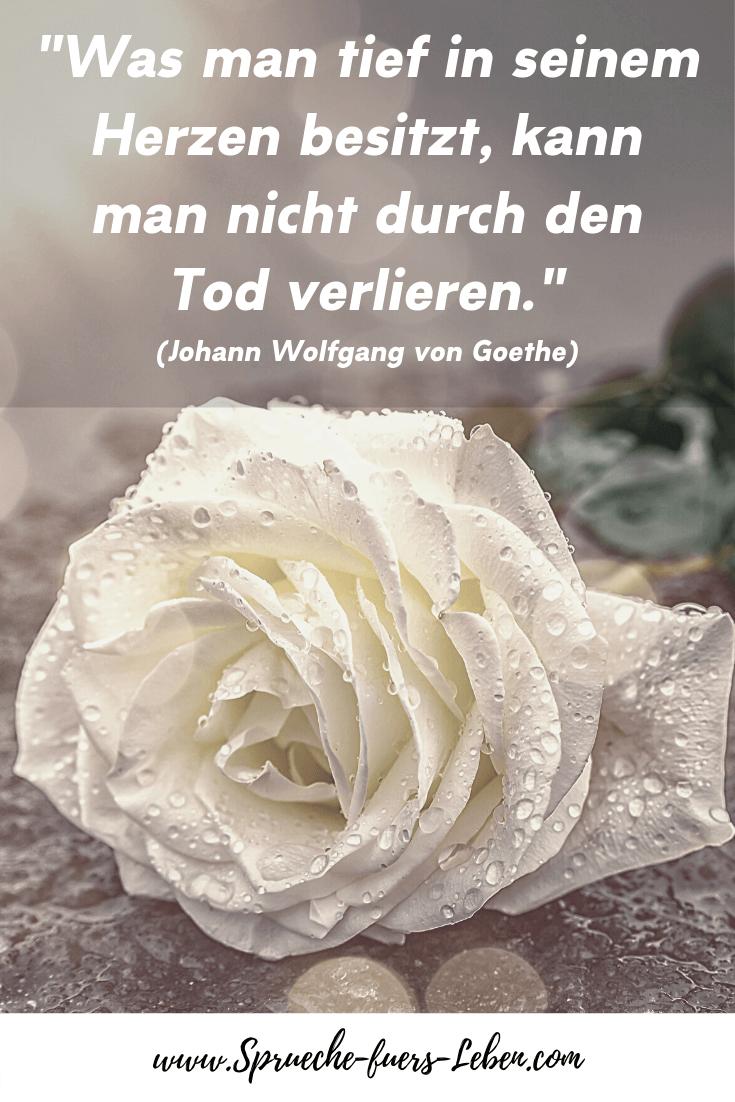"""""""Was man tief in seinem Herzen besitzt, kann man nicht durch den Tod verlieren."""" (Johann Wolfgang von Goethe)"""
