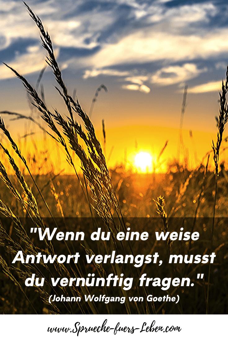 """""""Wenn du eine weise Antwort verlangst, musst du vernünftig fragen."""" (Johann Wolfgang von Goethe)"""