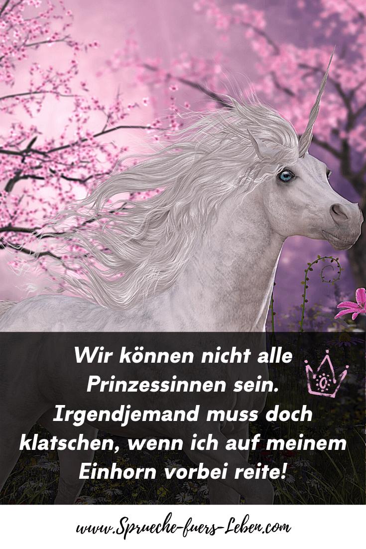 Wir können nicht alle Prinzessinnen sein. Irgendjemand muss doch klatschen, wenn ich auf meinem Einhorn vorbei reite!